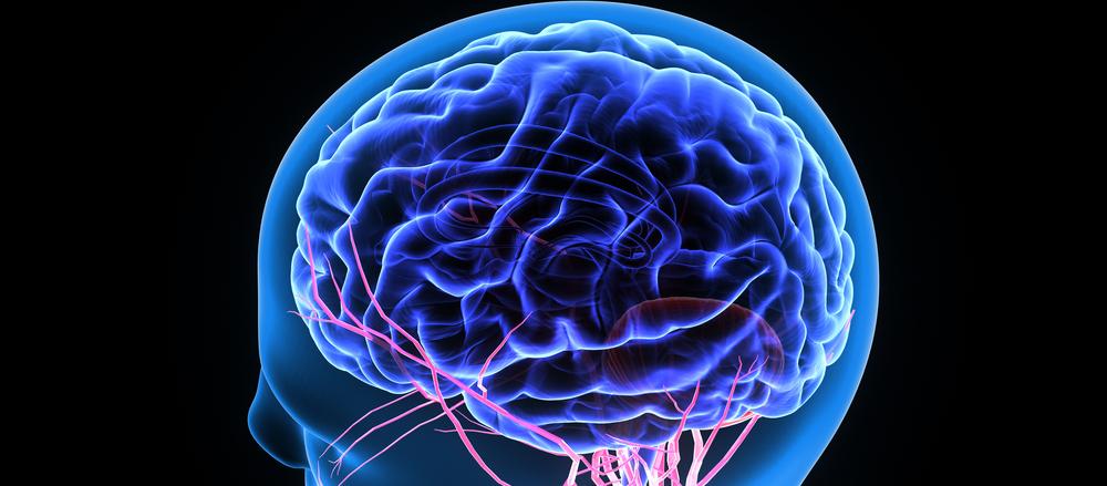 Heal the Brain with CBD