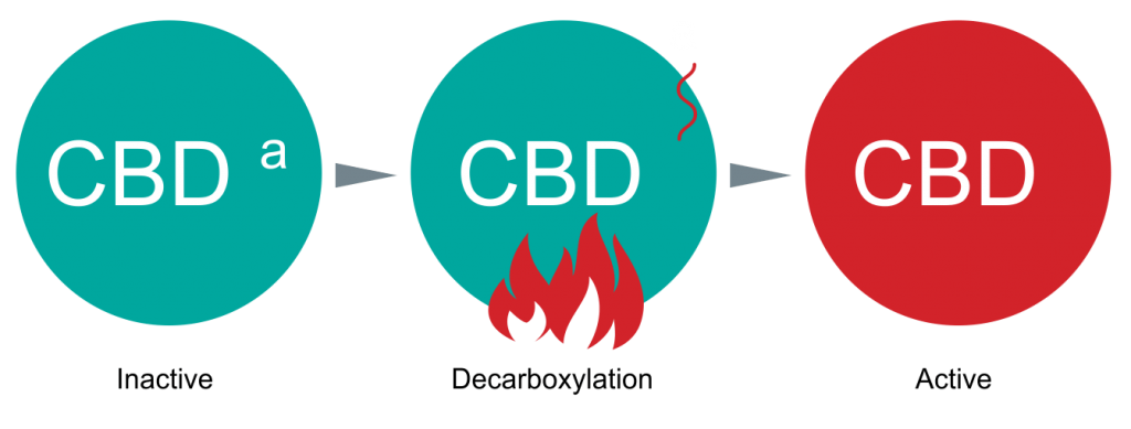 CBD Fully Decarboxylation